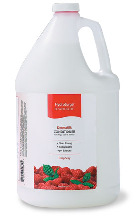 Hydrosurge Raspberry DermaSilk Conditioner #78499-RDC128-100